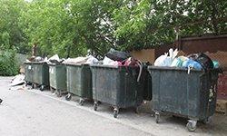 COVID-19 поразил «мусорную реформу»
